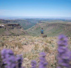 Hiker in Big Indian Gorge