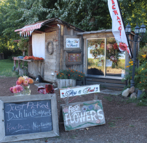 Roadside fruit and flower stand