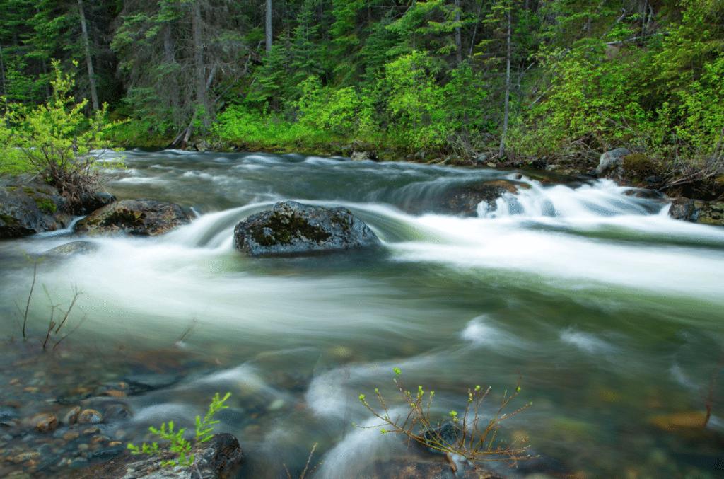 Desolation Creek Umatilla National Forest