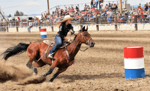 Haines Stampede Rodeo