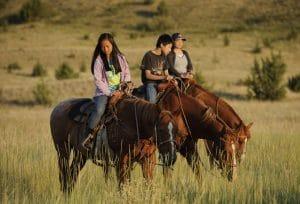 Horses in Eastern Oregon