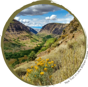 Nye Trail in Little Blitzen Gorge