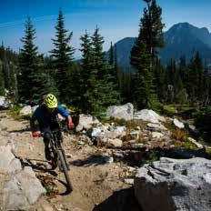 Mountain Biking near Anthony Lakes